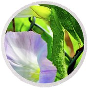 Flowers On The Fence Round Beach Towel