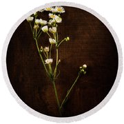 Flowers On Wood Round Beach Towel