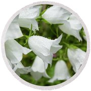 Flowers With Droplets 1 Round Beach Towel