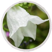 Flowers With Droplets 3 Round Beach Towel