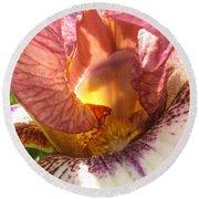Flowerscape Pink Iris One Round Beach Towel