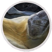 Flowing Rock 3 Round Beach Towel