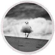 Fluffy Bird Round Beach Towel