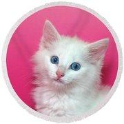 Fluffy White Kitten On Pink Round Beach Towel