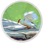 Fly Away Duck Round Beach Towel