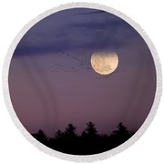 Fly By Night Square Round Beach Towel