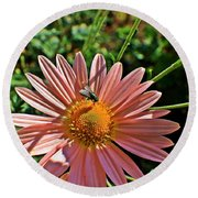 Fly On Flower Round Beach Towel