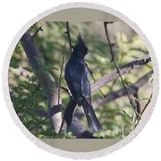 Silky Flycatcher Round Beach Towel