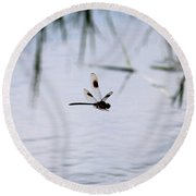 Flying Dragonfly Over Pond With Reeds Round Beach Towel
