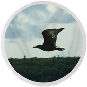 Flying Ephraim Wi Round Beach Towel