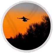 Flying Free In Northen Beaches Round Beach Towel