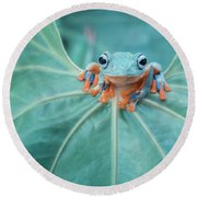 Flying Frog Wallace Round Beach Towel