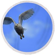 Flying Round Beach Towel