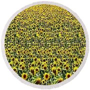 Flying Over Sunflower Fields Round Beach Towel