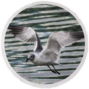 Flying Seagull Round Beach Towel