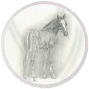 Spring Foal Round Beach Towel