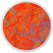 Focus Of Attention 38 Round Beach Towel