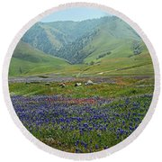 Fog And Wildflowers At Bear Mountain Round Beach Towel