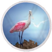 Foggy Morning Spoonbill Round Beach Towel