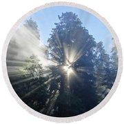Foggy Redwood Sunrise Round Beach Towel