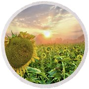 Foggy Yellow Fields 3 Round Beach Towel
