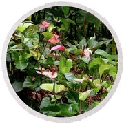 Foliage And Flowers Round Beach Towel