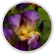 For The Love Of Iris Round Beach Towel