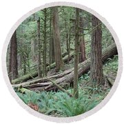 Forest And Ferns Round Beach Towel