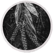 Forest Botanicals In Black And White Round Beach Towel