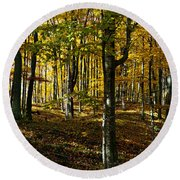 Forest Floor Two Round Beach Towel