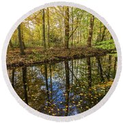 Forest Leaf Reflection Round Beach Towel
