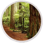 Forest Round Beach Towel by Les Cunliffe