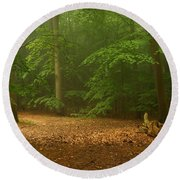 Forest Light 4 Round Beach Towel