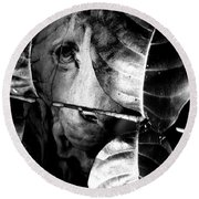 Forest Of The Labyrinth Lion Round Beach Towel