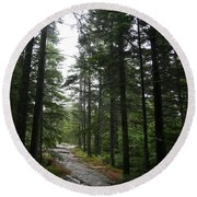 Forest Path At Grafton Notch State Park Round Beach Towel