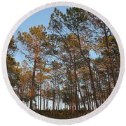 Forest Pine Trees At Sunset Round Beach Towel