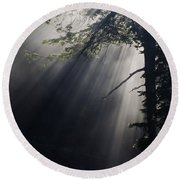 Forest Rays Round Beach Towel