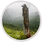 Forest Remnant Round Beach Towel