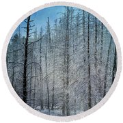 Forest Secrets  7917 Round Beach Towel