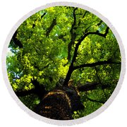 Forest Top Round Beach Towel