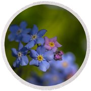 Forget Me Not 2 Round Beach Towel