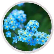 Forget -me-not 4 Round Beach Towel