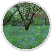 Forget Me Not Flowers Round Beach Towel
