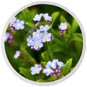 Forget Me Nots Round Beach Towel