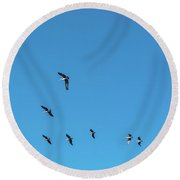 Formation Of Pelicans Flying Together Round Beach Towel