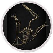 Fossil Record - Gold Pterodactyl Fossil On Black Canvas #4 Round Beach Towel