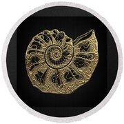 Fossil Record - Golden Ammonite Fossil On Square Black Canvas #4 Round Beach Towel