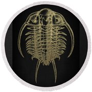 Fossil Record - Golden Trilobite On Black No.2 Round Beach Towel