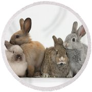 Four Baby Rabbits Round Beach Towel