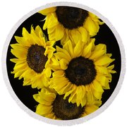 Four Sunny Sunflowers Round Beach Towel